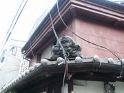 大阪の家 再び生きる。