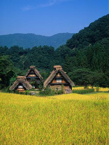 究極の木造住宅