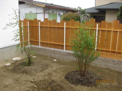 地植え,植栽